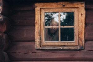 saunaga puhkemaja metsamaja